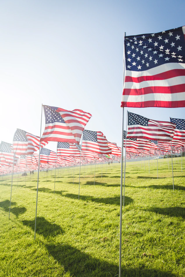 Several American flags in a field.